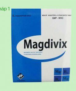 Hộp Magdivix dạng vỉ